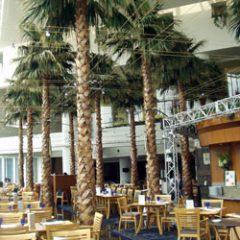 横浜パンパシフィックホテル