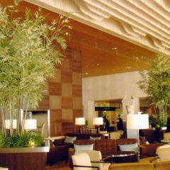 シェラトンホテル(白金)